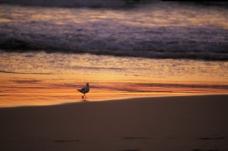 海滩 海边 风景如画 美好大自然