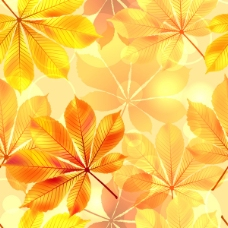 矢量秋季树叶矢量设计素材