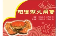 大闸蟹宣传单图片